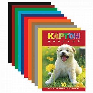 """Картон цветной А4 МЕЛОВАННЫЙ, 10 листов 10 цветов, в папке, HATBER VK, 195х290 мм, """"Белый щенок"""", 10Кц4 03414, N217276"""