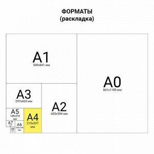 Тетрадь бумвинил, А4, 80 л., скоба, офсет №1, клетка, STAFF, СИНИЙ, 403405