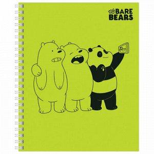 """Тетрадь, А5, 48 л., HATBER, гребень, клетка, обложка картон, """"Вся правда о медведях"""" (4 вида), 48Т5В1гр"""
