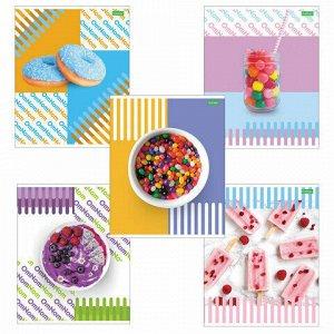 """Тетрадь А5, 48 л., HATBER ECO, скоба, клетка, обложка картон, """"Candy"""" (5 видов), 48Т5C1"""
