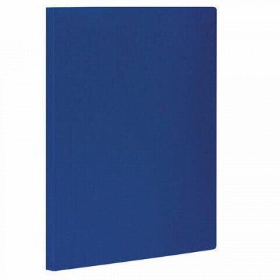 HATBER и ко — яркая качественная доступная канцелярия — STAFF-Папки пластиковые с прижимом — Офисная канцелярия