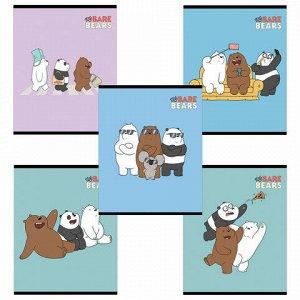 """Тетрадь А5, 48 л., HATBER, скоба, клетка, обложка картон, """"Вся правда о медведях"""" (5 видов в спайке), 48Т5В1"""