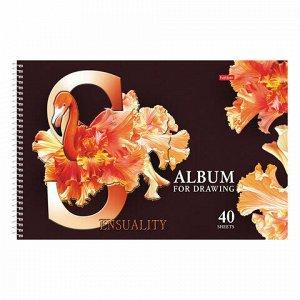 """Альбом для рисования, А4, 40 листов, спираль, конгрев, фольга, HATBER, 205х300 мм, """"Beautiful birds"""" (5), 40А4КфвлВсп"""