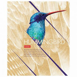 """Тетрадь А5, 80 л., HATBER, скоба, клетка, выборочный лак, """"Birds"""" (5 видов), 80Т5вмВ1"""