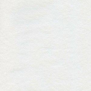 """Папка для акварели БОЛЬШОГО ФОРМАТА (295х420 мм) А3, 10 л., 180 г/м2, """"Золотая осень"""", HTB, 10Ба3B_06686(A059876)"""