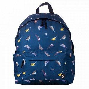 "Рюкзак BRAUBERG универсальный, сити-формат, синий, ""Птицы"", 23 литра, 43х34х15 см, 226401"