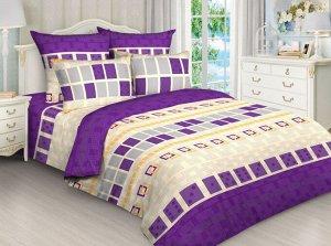 Постельное белье из бязи без шва 2 спальный с европростыней