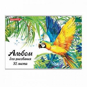 """Альбом для рисования А4 32 л., скоба, блестки, BRAUBERG, 202х285 мм, """"Попугай"""" (1 вид), 105612"""