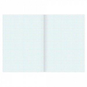 Тетрадь А4, 96 л., BRAUBERG скоба, клетка, обложка картон, ИНДЕЙ, 400520