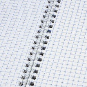 "Тетрадь А4- (175х248 мм), 80 л., BRAUBERG, гребень, клетка, обложка пластик, ""ОФИС"", 401796"