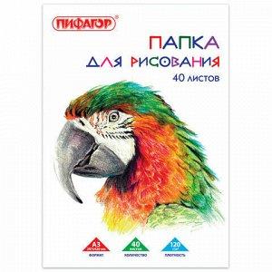 """Папка для рисования БОЛЬШОГО ФОРМАТА А3, 40 л., 120 г/м2, ПИФАГОР, 297х420 мм, """"Попугай"""", 129219"""