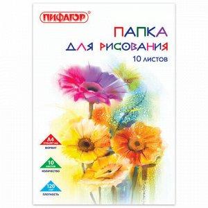 """Папка для рисования, А4, 10 л., 120 г/м2, ПИФАГОР, 210х297 мм, """"Цветы"""", 129220"""