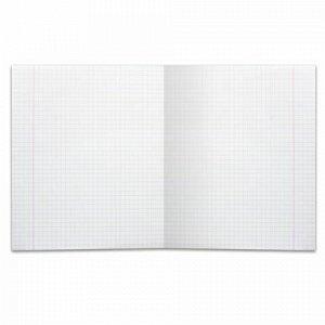 Тетрадь 12 л. BRAUBERG, клетка, обложка картон, ТОЧКИ, 103023