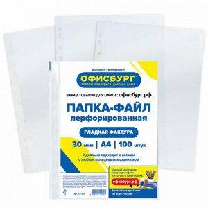 Папки-файлы перфорированные ОФИСБУРГ, А4, комплект 100 шт., гладкие, 30 мкм, 227525