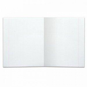 Тетрадь 24 л. BRAUBERG КЛАССИКА, клетка, обложка картон, АССОРТИ (5 видов), 401993