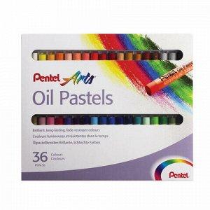 """Пастель масляная художественная PENTEL """"Oil Pastels"""", 36 цветов, круглое сечение, картонная упаковка, PHN4-36"""