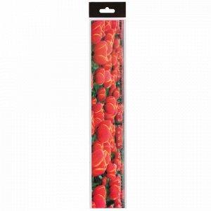 """Линейка 3D, 30 см, BRAUBERG, объемная, """"Красные тюльпаны"""", европодвес, 210590"""