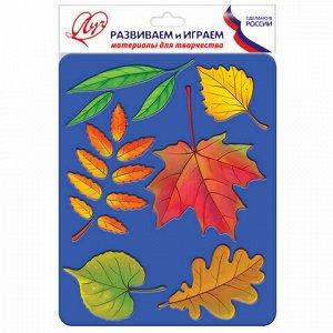 """Трафарет-раскраска ЛУЧ """"Листья деревьев"""", 165 мм х 205 мм, 10С 527-08"""