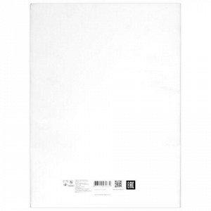 Папка для черчения БОЛЬШОГО ФОРМАТА (297х420 мм) А3, 24 л., 200 г/м2, без рамки, ватман СПБФ ГОЗНАК, 3с63