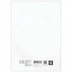 Папка для черчения, А4, 210х297 мм, 24 л., 200 г/м2, без рамки, ватман ГОЗНАК СПБФ, 3с62