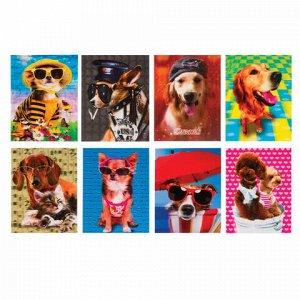 """Блокнот МАЛЫЙ ФОРМАТ (64х82 мм) А7, 40 л., склейка, пластиковая 3D обложка, без линовки, BRAUBERG, """"Собаки"""", ассорти, 128084"""