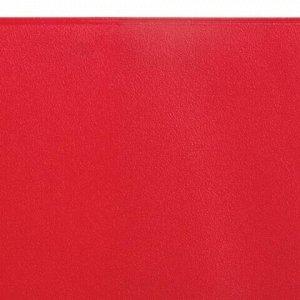 Обложка для классного журнала, ПВХ, непрозрачная, красная, 300 мкм, 310х440 мм, ДПС, 1894.ЖМ-102