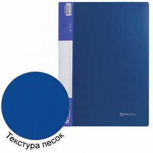 "Папка на 2 кольцах BRAUBERG ""Стандарт"", 25 мм, синяя, до 170 листов, 0,8 мм, 221615"