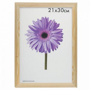 "Рамка премиум 21х30 см, дерево, багет 26 мм, ""Linda"", светлое дерево, 0065-8-0000"