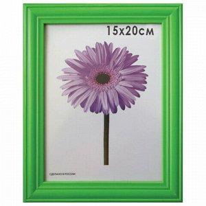 """Рамка премиум 15х20 см, дерево, багет 26 мм, """"Linda"""", зеленая, подставка, 0065-6-0008"""