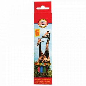 """Карандаши цветные KOH-I-NOOR """"Animals"""", 6 цветов, грифель 2,8 мм, заточенные, европодвес, 3551/6, 3551006008KSRU"""