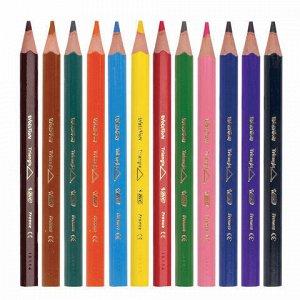 """Карандаши цветные утолщенные BIC """"Kids Evolution Triangle"""", 12 цветов, пластиковые, трехгранные, картонная упаковка, 8297356"""