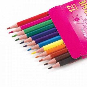"""Карандаши цветные BRAUBERG """"Rose Angel"""", 12 цветов, пластиковые, заточенные, картонная упаковка, 180577"""