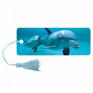 """Закладка для книг 3D, BRAUBERG, объемная c движением """"Дельфин"""", с декоративным шнурком-завязкой, 125749"""