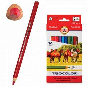 """Карандаши цветные утолщенные KOH-I-NOOR """"Triocolor"""", 12 цветов, трехгранные, 5,6 мм, заточенные, 3142012005KS"""