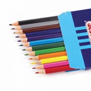 """Карандаши цветные ПИФАГОР """"ЖИРАФ"""", 12 цветов, пластиковые, классические заточенные, 181250"""