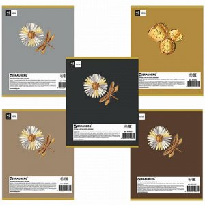 Тетрадь А5, 48 л., BRAUBERG, клетка, блестки, МЕХАНИЗМЫ, 403052