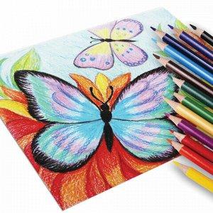 Карандаши цветные JOVI (Испания) 12 цветов, трехгранные, заточенные, картонная упаковка, 733/12