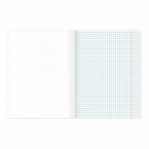 Тетрадь предметная ПАЛИТРА ЗНАНИЙ 36 листов, обложка мелованная бумага, ИНФОРМАТИКА, клетка, BRAUBERG, 403496