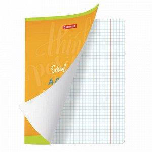 Тетрадь предметная ПАЛИТРА ЗНАНИЙ 36 листов, обложка мелованная бумага, АЛГЕБРА, клетка, BRAUBERG, 403499