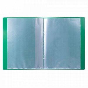 Папка 10 вкладышей BRAUBERG стандарт, зеленая, 0,5 мм, 221589