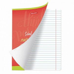 Тетрадь предметная ПАЛИТРА ЗНАНИЙ 36 листов, обложка мелованная бумага, ЛИТЕРАТУРА, клетка, BRAUBERG, 403505