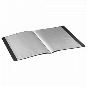 Папка 20 вкладышей BRAUBERG стандарт, черная, 0,6 мм, 221596