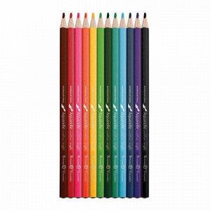 Карандаши цветные акварельные BRUNO VISCONTI Aquarelle, 12 цветов, металлический пенал, 30-0037