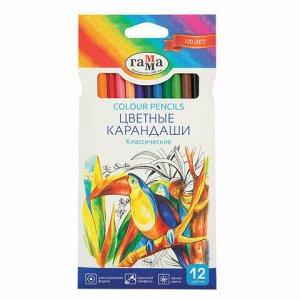 """Карандаши цветные ГАММА """"Классические"""", 12 цветов, заточенные, шестигранные, картонная упаковка, 05091802, 050918_02"""