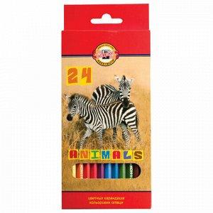 """Карандаши цветные KOH-I-NOOR """"Animals"""", 24 цвета, грифель 2,8 мм, заточенные, европодвес, 3554/24, 3554024008KSRU"""