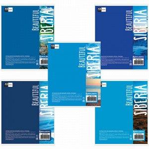 Тетрадь А5, 48 л., BRAUBERG, клетка, обложка картон, ПРИРОДА, 403031