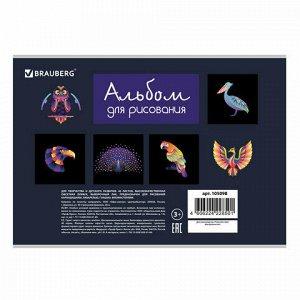 """Альбом для рисования А4 40 л., скоба, выборочный лак, BRAUBERG, 202х285 мм, """"Птицы"""" (1 вид), 105098"""