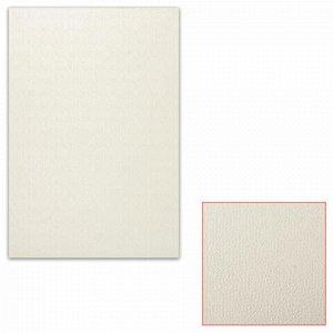 Картон белый грунтованный для масляной живописи, 25х35 см, односторонний, толщина 0,9 мм, масляный грунт