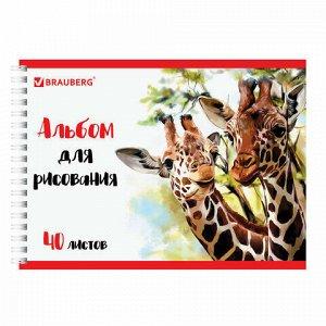 "Альбом для рисования, А4, 40 л., гребень, обложка картон, BRAUBERG ЭКО, 205х290 мм, ""Жирафы"" (1 вид), 105104"