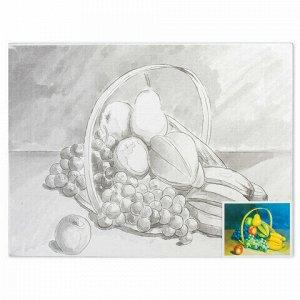Холст на картоне с контуром BRAUBERG ART CLASSIC, ФРУКТЫ, 30х40см, грунтованный, 100% хлопок, 190634